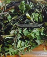 Moringa Dragon tea leaves